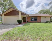 2840 Thistle Court N, Palm Harbor image