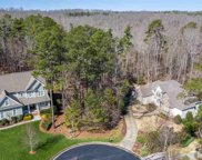 133 Forked Pine Court, Chapel Hill image