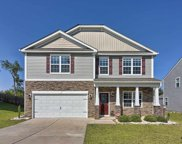 556 Eagles Rest Drive, Chapin image