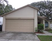 14003 Pomelo Place, Tampa image