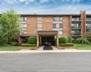 201 Lake Hinsdale Drive Unit 302, Willowbrook image