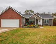 1152 Wrights Mill Rd, Spring Hill image