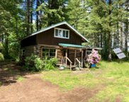 531 W Dry Bed Creek Rd, Matlock image