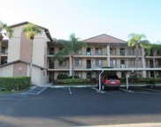 7380 Saint Ives Way Unit 1206, Naples image