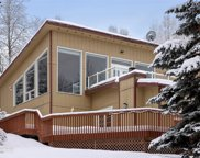 10325 Main Tree Drive, Anchorage image