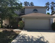 27251 Edenfield Drive, Wesley Chapel image