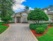 2448 STONEY GLEN DR, Orange Park image