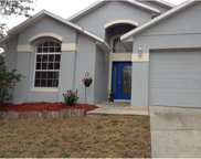 1546 Nightfall Drive, Clermont image