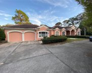 1011 Riverside Ridge Road, Tarpon Springs image
