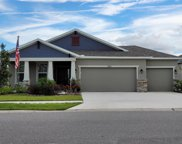 11931 Tetrafin Drive, Riverview image