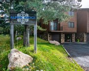 3055 Village Drive Unit 201-A, Steamboat Springs image