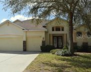 1610 Brilliant Cut Way, Valrico image