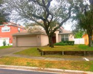 7325 Brightwater Oaks Drive, Tampa image