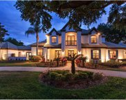 12712 Water Point Boulevard, Windermere image