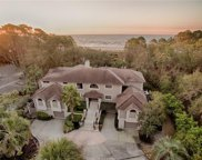 20 Sea Oak Lane, Hilton Head Island image