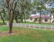 10082 Lake Meadow Road, Apopka image