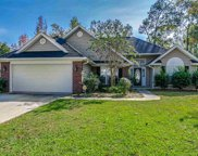 1047 Rosehaven Drive, Conway image