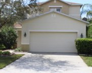 3635 Peppervine Place, Wesley Chapel image