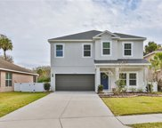 7023 Water Mill Street, Palmetto image