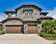 13324 Fawn Lily Drive, Riverview image