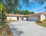 2874 Endicott Court, Clearwater image