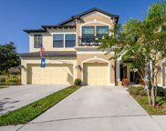 11504 Crowned Sparrow Lane, Tampa image