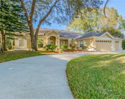 3677 Embassy Circle, Palm Harbor image