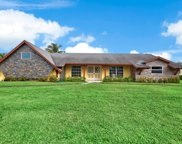 4651 Holly Drive, Palm Beach Gardens image