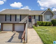 1836 Pebble Lake Dr, Birmingham image