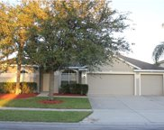 10227 Mallard Landings Way, Orlando image