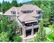160 Glengarry Place, Castle Rock image