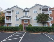 10642  Hill Point Court, Charlotte image