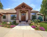 905 Anaconda Court, Castle Rock image