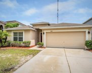 10462 Fly Fishing Street, Riverview image