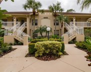 4200 Sawgrass Point Dr Unit 203, Bonita Springs image