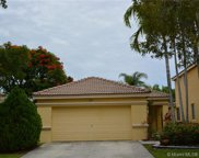 1163 Golden Cane Dr, Weston image