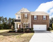 12534  Dove Meadow Drive, Charlotte image