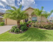 12401 Ballentrae Forest Drive, Riverview image