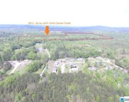Hwy 174 Unit 60+/- Acres, Springville image