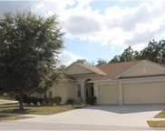 13317 Blythewood Drive, Spring Hill image