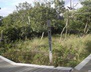 Teal Walk, Fire Island Pine image