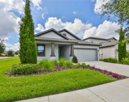 12237 Creek Preserve Drive, Riverview image