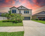 11013 Little Blue Heron Drive, Riverview image