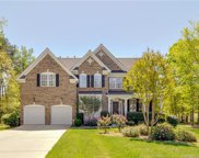 1604  Sycaberry Lane Unit #264, Mint Hill image