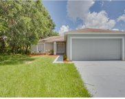 617 Gull Drive, Poinciana image