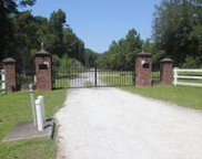 Gated Horse Road, Meggett image