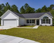 2524 Baronesso Ct., Conway image