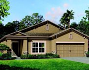 8210 Mallow Mirror Lane, Land O' Lakes image