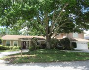3131 N Canal Drive, Palm Harbor image