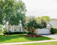 580 Turtle Pond Court, Lake Zurich image
